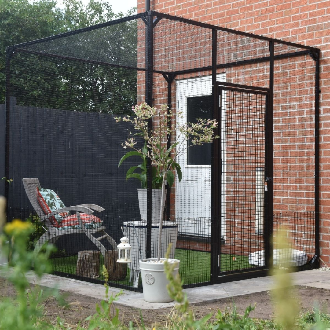 Read more about the article Why You Should Make a Catio and How It Helps Your Home and Cats